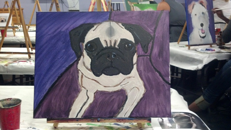 Pug-Dog-Pictures