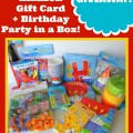 Birthday-Party-in-a-Box-Giveaway-731x1024