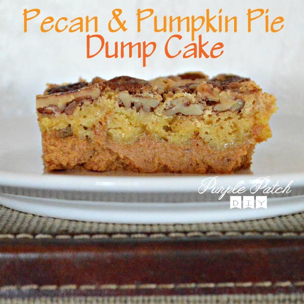 pumpkin-dump-cake-3